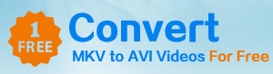 How to Convert MKV to AVI for free